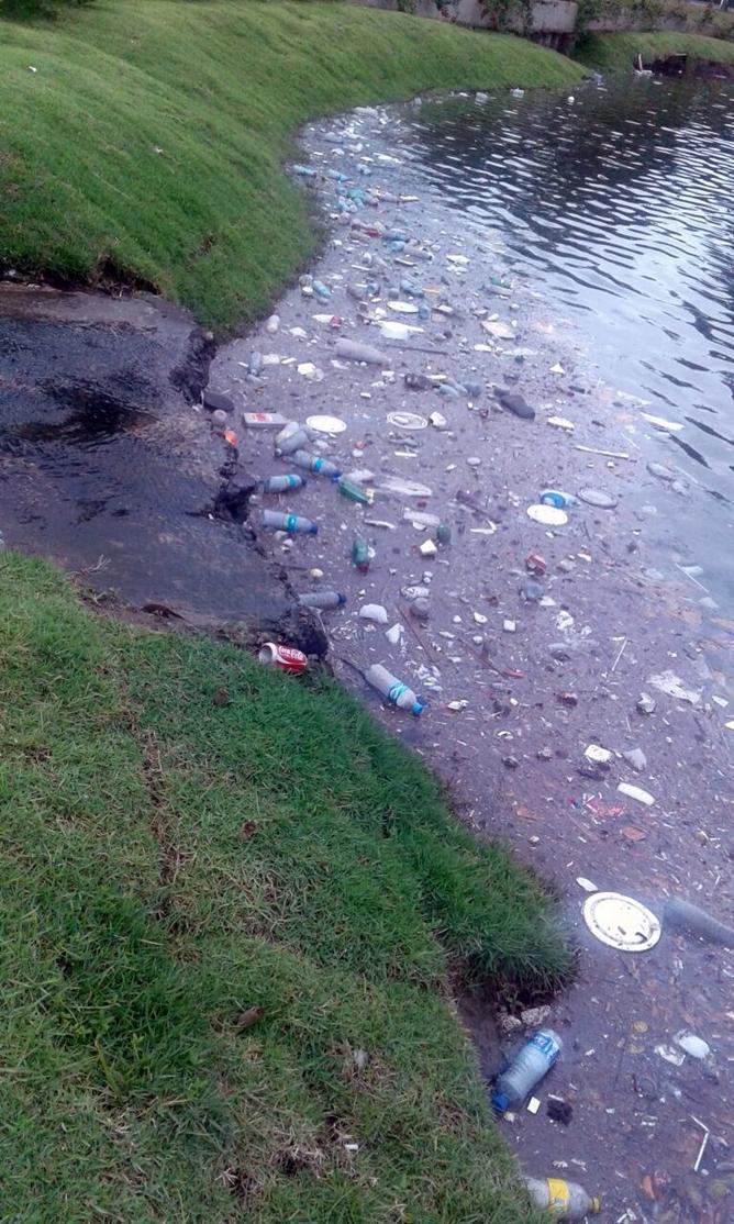 Lixo na Lagoa_2008
