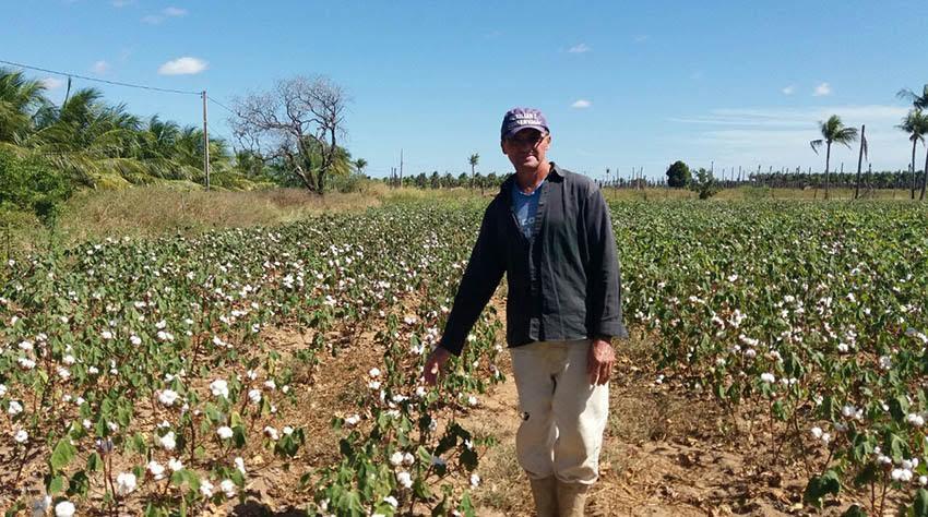 Paraíba retoma ações de cooperação com o Mercosul em extensão rural