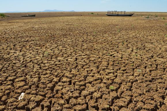 Nordeste conta com monitoramento de secas baseado em sistema dos EUA