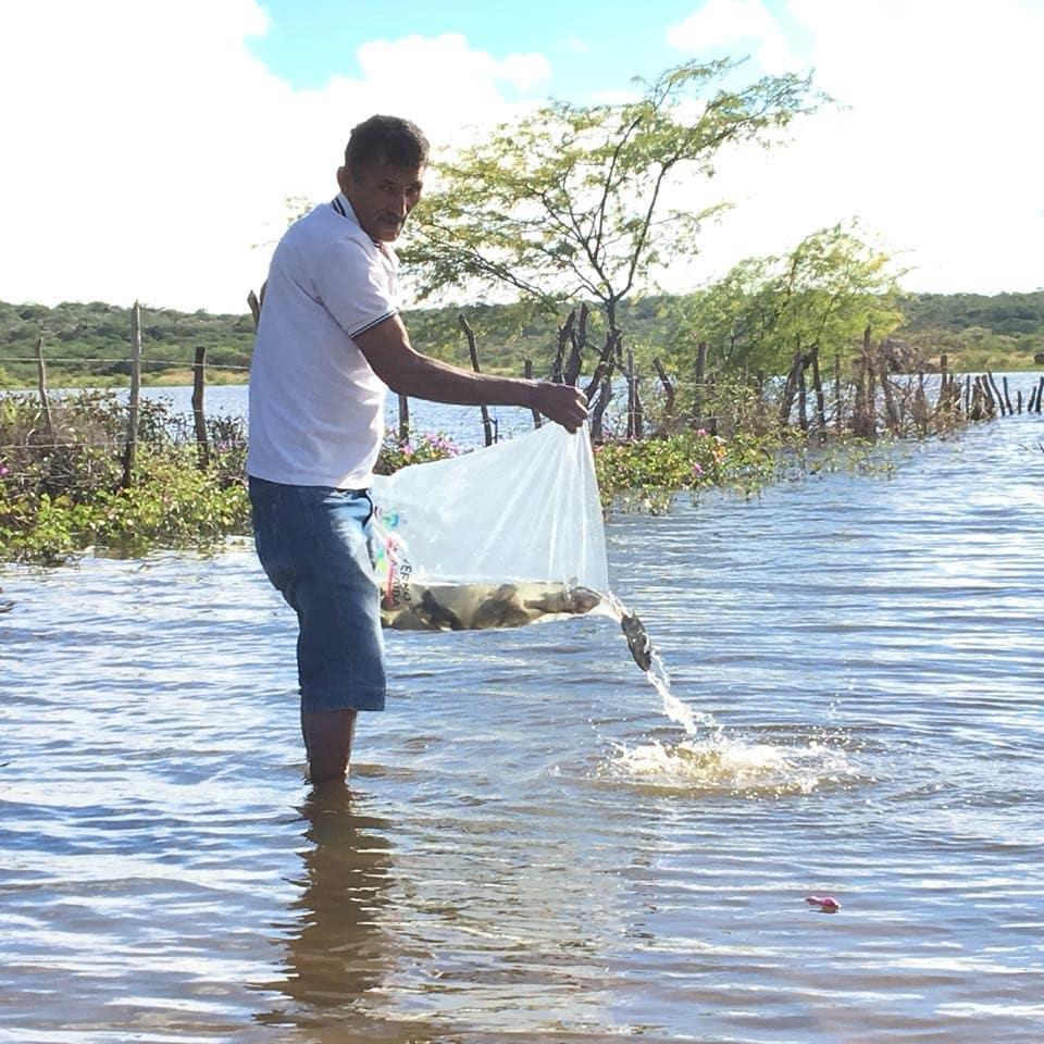 Estado distribui peixes em açudes do Cariri para resgatar renda de pescadores