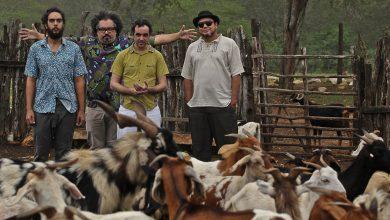 Banda realizará quatro apresentações durante o mês de abril no Recanto da Cevada, no Bancários