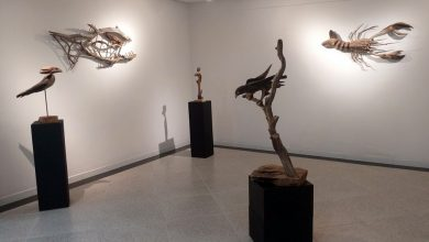Energisa expõe 'Da natureza, suas formas', do escultor Gilton Lira