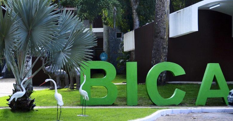 """Domingo no parque - A """"Bica"""" está virando um zoo sem bichos?"""