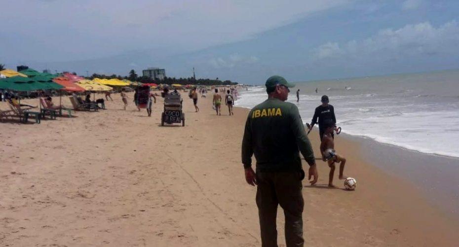 Análises constatam que praias paraibanas se mantêm livres de manchas de óleo